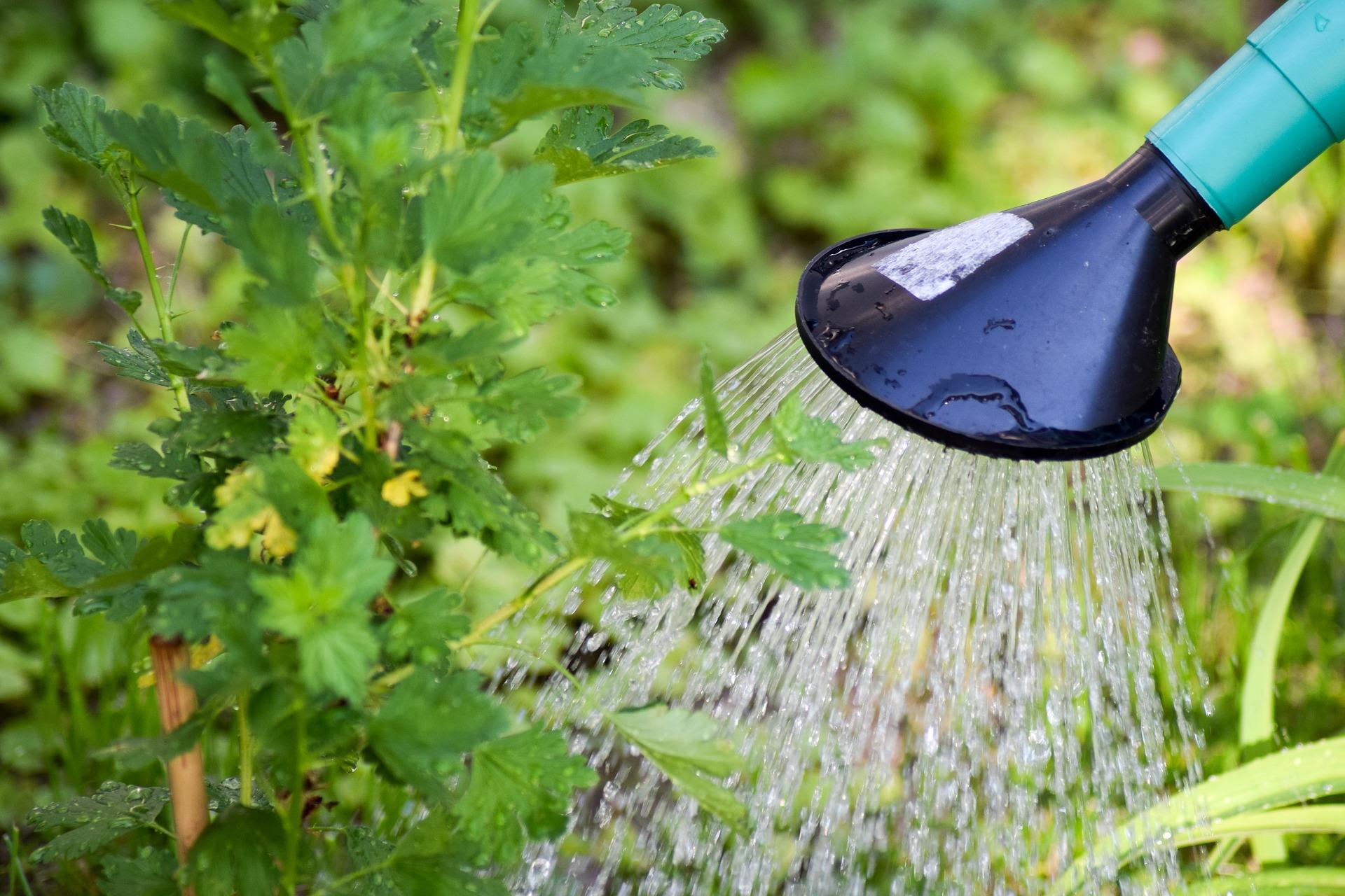 sistem penyiraman tanaman otomatis